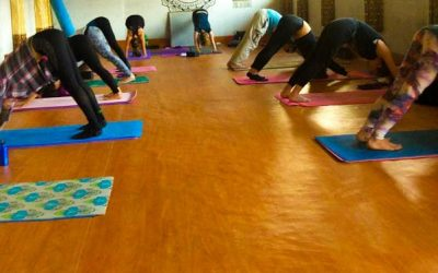 Yoga Instructor Course in Nepal